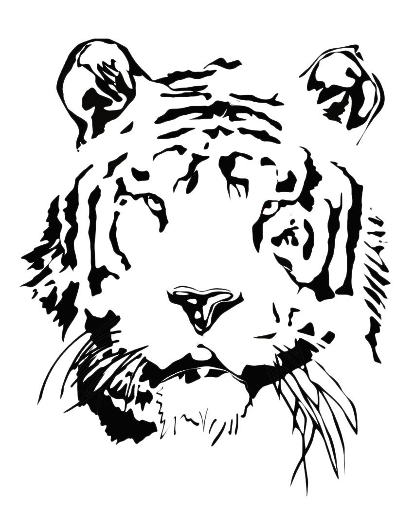 Tigre da colorare 37