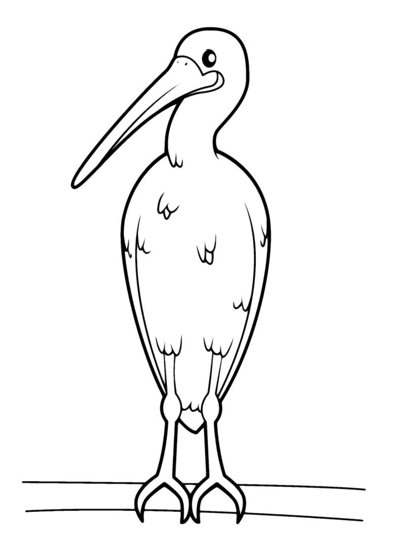 Uccello da colorare 88