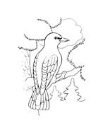 Uccello da colorare 97