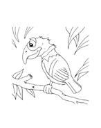 Uccello da colorare 103