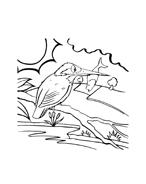 Uccello da colorare 107