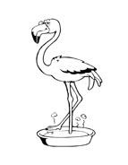 Uccello da colorare 109