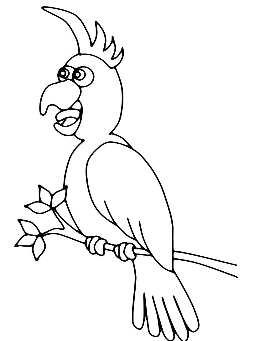 Uccello da colorare 115