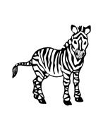 Zebra da colorare 2