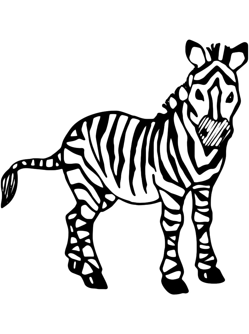 Zebra da colorare 2