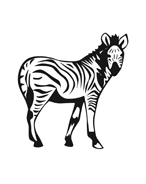 Zebra da colorare 6