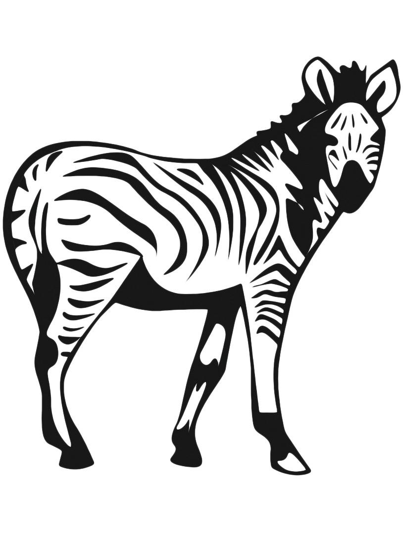 Zebra da colorare 6