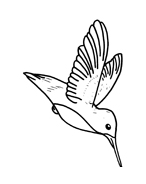 Uccello da colorare 123