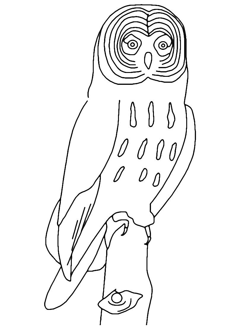 Uccello da colorare 124