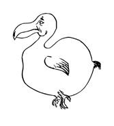 Uccello da colorare 131