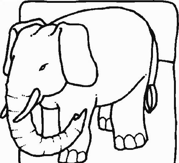 Elefante da colorare 24