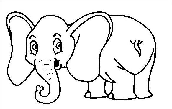 Elefante da colorare 34