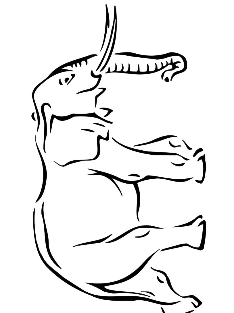 Elefante da colorare 62