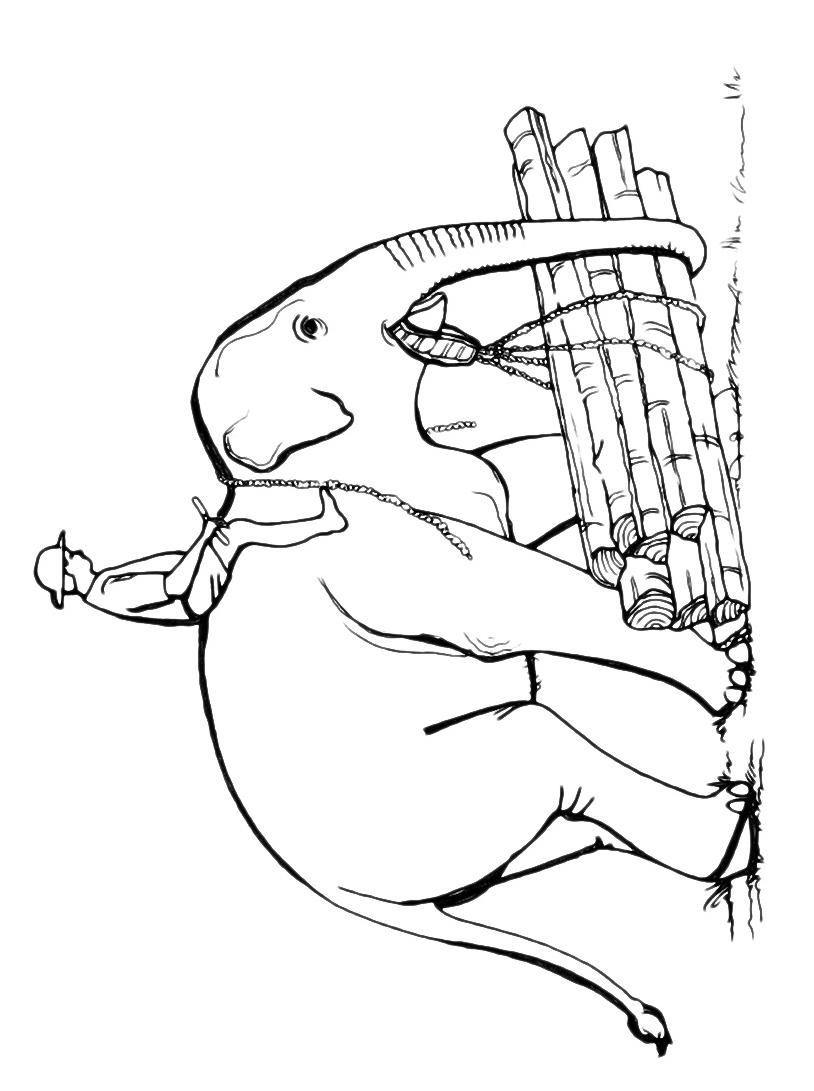 Elefante da colorare 76