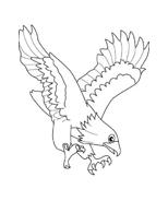 Uccello da colorare 145