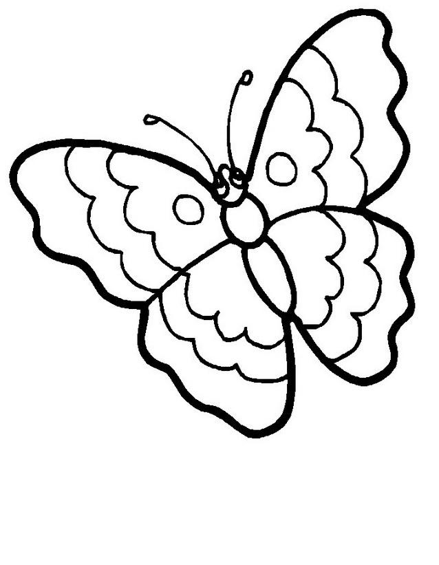 Farfalla da colorare 21