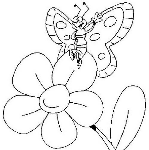 Farfalla da colorare 33