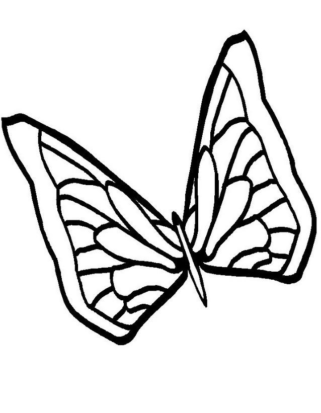Farfalla da colorare 35