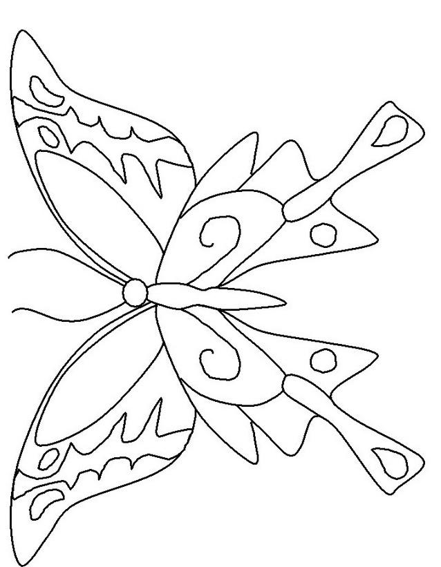 Farfalla da colorare 39