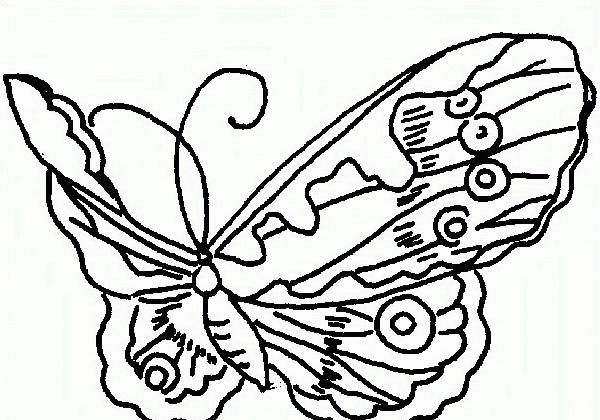 Farfalla da colorare 54