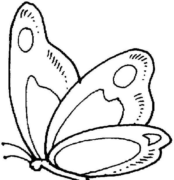 Farfalla da colorare 67