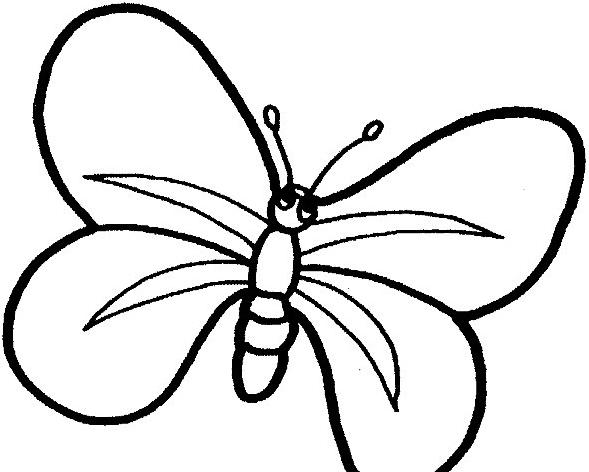 Farfalla da colorare 71