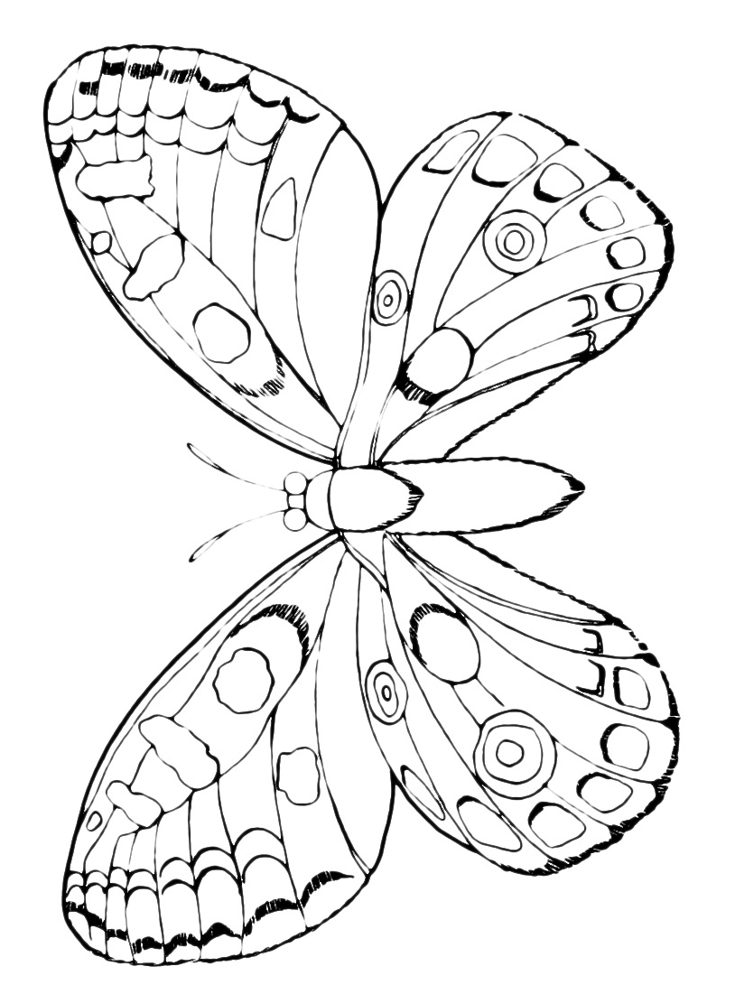Farfalla da colorare 95