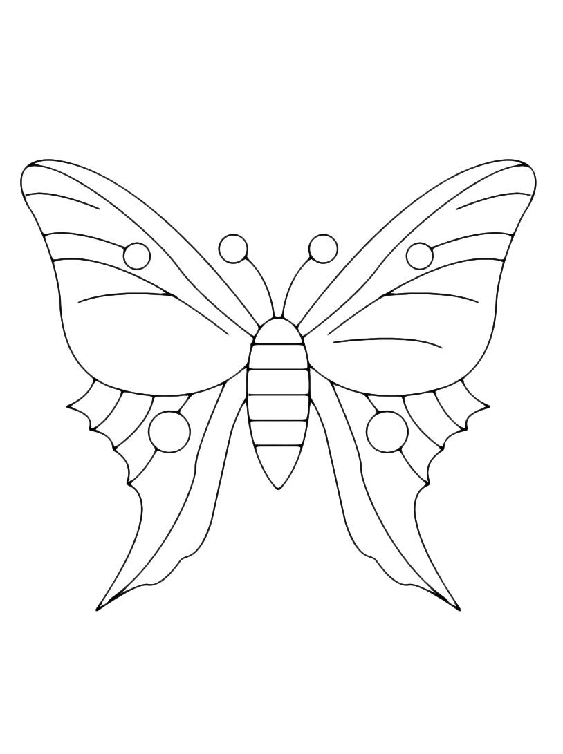 Farfalla da colorare 98