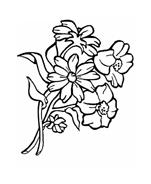 Fiore da colorare 34