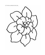 Fiore da colorare 35