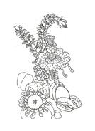 Fiore da colorare 38