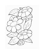 Fiore da colorare 48