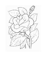 Fiore da colorare 56