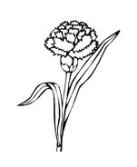 Fiore da colorare 60
