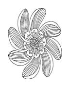 Fiore da colorare 63