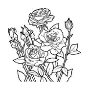 Fiore da colorare 65