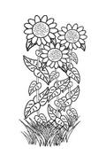 Fiore da colorare 71