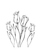 Fiore da colorare 88