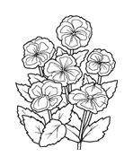 Fiore da colorare 93