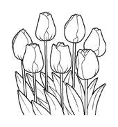 Fiore da colorare 97