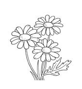 Fiore da colorare 106