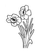 Fiore da colorare 121