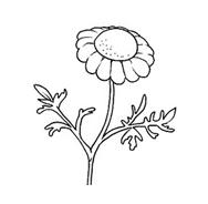 Fiore da colorare 127