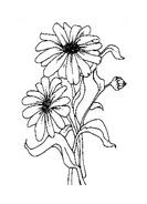 Fiore da colorare 128