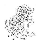 Fiore da colorare 131