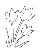 Fiore da colorare 144