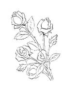 Fiore da colorare 145