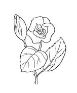 Fiore da colorare 149