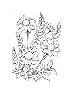Fiore da colorare 153