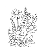 Fiore da colorare 155